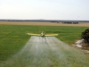 Airtractor AT-502 - Spraying